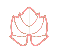 feuille rose